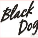blackdog 1 150x150 - Random boat names