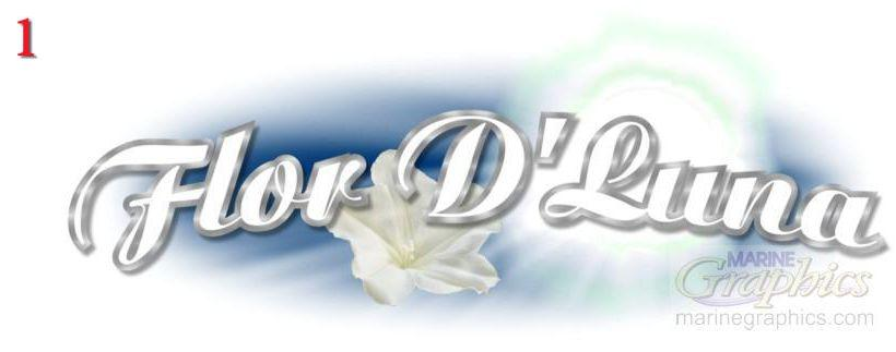 Custom boat graphic for Flor D'Luna #1